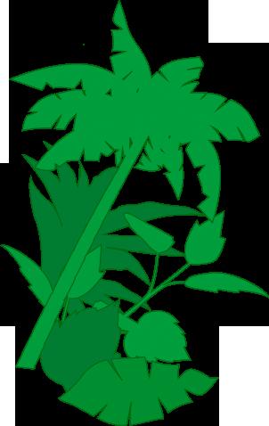 Palmen rechts